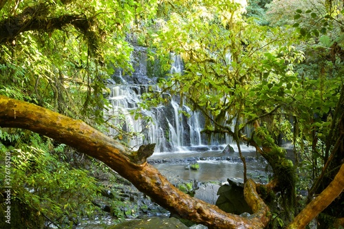 View of waterfall through foliage, New Zealand - 376765128