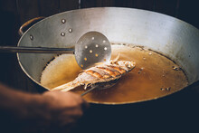 Person Cooking Fish In Pan, Cl...