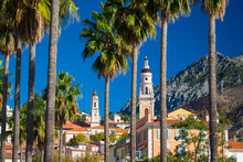 Palm Trees And The Basilica Of St. Michael The Archangel, Menton, France