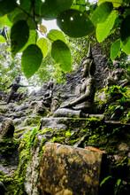 Buddhist Statues In Secret Buddha Garden, Koh Samui, Thailand