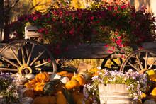 Pumpkin And Flowers Arranged On Wooden Cart