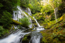 Scenic View Of Panther Creek Falls In Forest