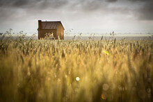 View Of Barn In Field Against Cloudy Sky
