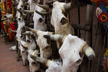 Close Up Of Animal Heads At Ma...