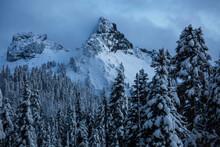 Pinnacle Peak Above Snowy Forest In Mount Rainier National Park