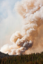 View Of Smoke Rising From Forest Fire