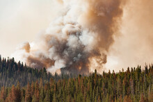 Smoke Emitting From Wildfire I...