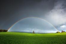 Rainbow Over Field In Clare Va...