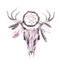 Deer Animal Skull With Dream C...