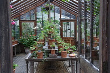 Entourage Of Botanical Garden ...