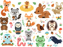 Woodland Decorated Animals Clipart