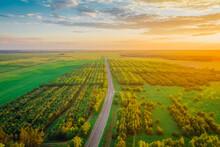 Transit Highway In Belarus, Ly...