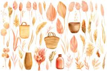 Set Dry Leaves, Beige Flowers, Herbs, Watercolor