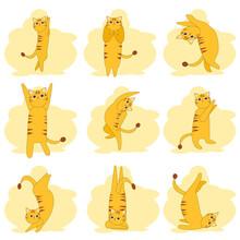 Set Of Nine Yellow Cat, Kitty ...
