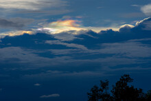 Beautiful Irisation,Rainbow Clouds,Sky Beautiful,Colorful Clouds In The Overcast Sky,Iridescent Cloud ,Iridescent Pileus,Iridescenc, Foreground Tree Silhouette 02