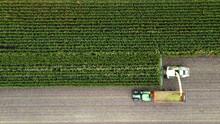 Harvesting A Maize Field
