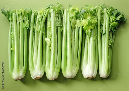 Fotografering fresh bunches of celery on a green background