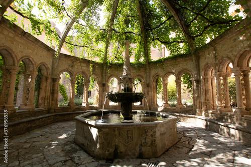 Fontaine recouverte d'un dôme et d'une vigne du cloître de l'abbaye de Valmagne Canvas Print