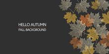 Autumn Background. Skeleton Maple Leaves On Dark Background. Border Made Of Fall Leaves. Vector Illustration