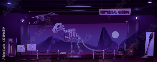 Fotografie, Obraz Historical museum with dinosaur skeleton and archeological exhibits at night