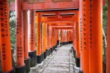 Japan, Honshu, Kyoto, Fushimi ...