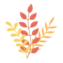 Autumn Foliage Leaves Branch Natural Isolated Icon Style