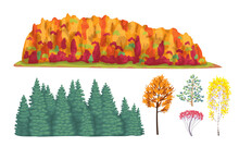 Simple Autumn Forest Fragments And Trees.