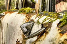Broken Door Handle On Old Abandoned Car With Rust And Moss Growing On The Side