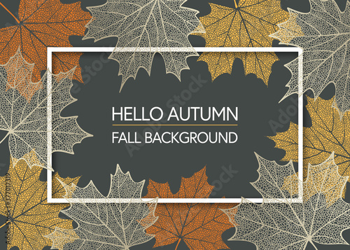 Canvas Autumn background with skeleton maple leaves
