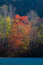 Autumn In The Great Smoky Mountains National Park