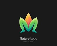 Colorful Leaf Logo