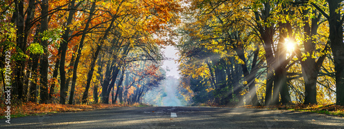 Beautiful autumn landscape with the road and the sun's rays of the setting sun Fotobehang