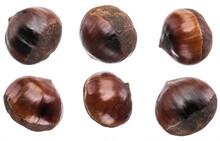Set Of Roasted Edible Chestnut Fruits Isolated On White Background.