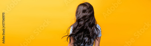 Fotografia back view of wind blowing through brunette hair of woman with curls isolated on