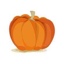 Autumn Vegetable Big Orange Pu...