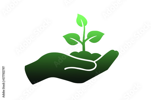 Plant in hand Vector icon for your design.