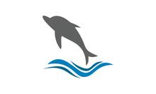 Jumping Dolphin Vector Logo