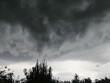 Groźne i piękne burzowe niebo - widok nad drzewami
