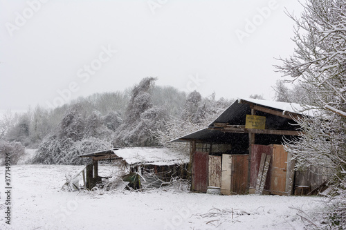 Fotografie, Tablou old wooden shack  in the snow
