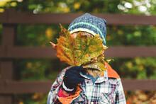 Boy Hides Behind Leaf In Fall