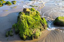 A Gorgeous Set Of Rocks At The Beach Covered In Lush Green Algae With Ocean Waves Rolling In At El Matador Beach In Malibu California