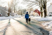 Boy Walking His Dog In The Winter