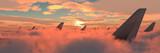 passenger plane in the sky