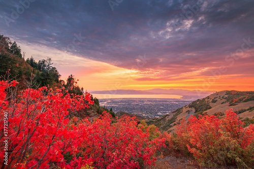 Photo Colorful fall scene in the Wasatch Front, Utah, USA.