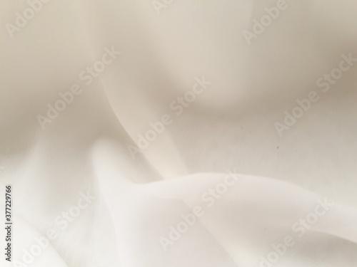 Fototapeta White Background