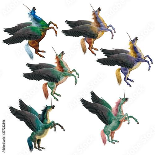 Fototapeta illustration, cheval, volant, ailes, animal, coloré,  blanc, jaune, bagarre, debout, étalon, mammifère, galop, ferme, 3-d, silhouette, arabe, chevalin, nature, course, animal de compagnie, sauvage, cr obraz