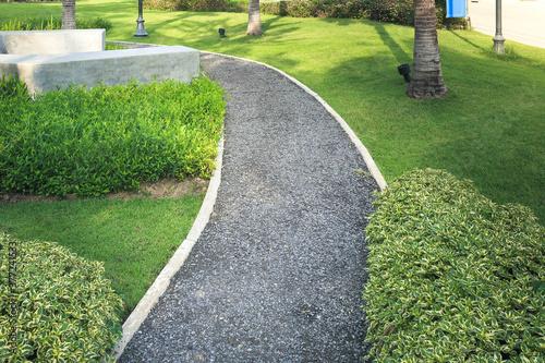 Fotografia Walkway and bush in garden