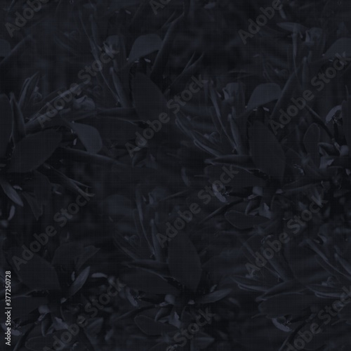 Fotografía Dark moody almost black leaf seamless pattern