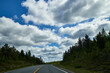 canvas print picture Beautiful landscape with blue sky, white clouds and the road that goes to the horizon with the forest and trees on the roadsides