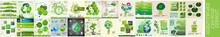 Modern Ecology Infographics Template